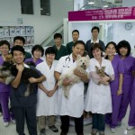 Dr Stone and his team of veterinaries Dr Ye Wei and Dr Clément with the team of nurses and the grooming team.
