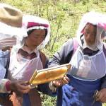 Les apicultrices du projet Abeilles de Hamagu.