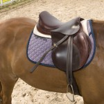 The Longma saddle on Melissa.