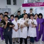 L'équipe de la clinique de Shunyi à Pékin.