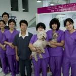 L'équipe des infirmières de la clinique de Shunyi.