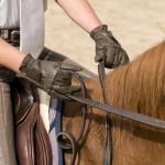 Ces gants cousus main sont en cuir espagnol et font partie de la gamme de produits proposés par Longma.