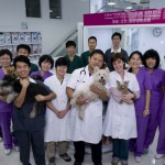Dr Stone (center) of Doctors Beck & Stone Pet health and care at the new Shunyi clinic.