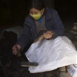 一名游牧民族的妇女在工作,为牦牛毛除尘。