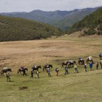 A Red Rock group of trekkers between Dali and Shaxi on the Tea and Horse Trail in Yunnan province.