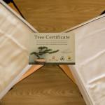 Chaque fois qu'une parure de lit Burnt Oringe est vendue Tarynn Hatton-Jones plante un arbre en Thailande de la part de l'acheteur.