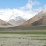 Travel-Stone organise régulièrement des voyages au Xinjiang, une province encore peu connue à l'ouest de la Chine.